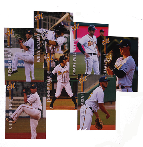 2016 Team Baseball Card Set